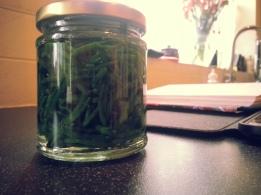 Pickled Samphire